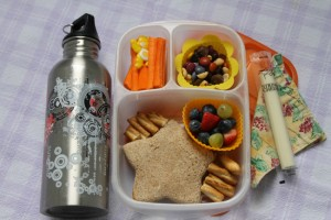 A Guest Post All About Packing Lunch