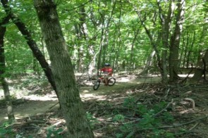 Get on Your Bike and Ride – Mitchell Memorial Forest