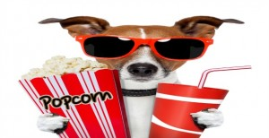 2013 FREE Summer Movie Nights Across Cincinnati