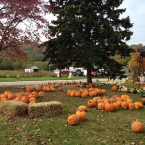 2016 Greater Cincinnati Fall Festivals and Farm Fun