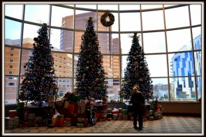 Family Friendly Holiday Events in Northern Kentucky {2016}