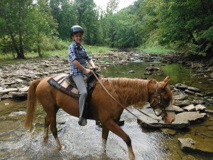 Camp Ernst Launches New Horse Specialty Camps for Kids