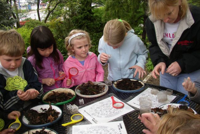 Guest Post: Start Backyard Composting for a Fun Family Project
