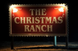 Photo credit goes to The Christmas Ranch.