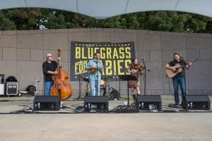 bluegrass babies483